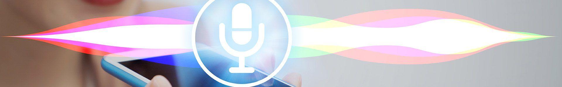 zoekmachine marketing en google voice search