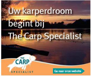 wat is google display advertising voorbeeld advertentie the carp specialist