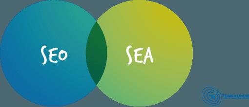 7 digital marketing must haves voor elke b2b ondernemer SEO SEA