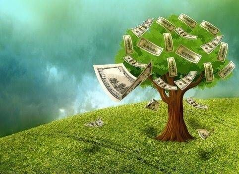 Conversie-driven-moet-geld-opleveren-meteen
